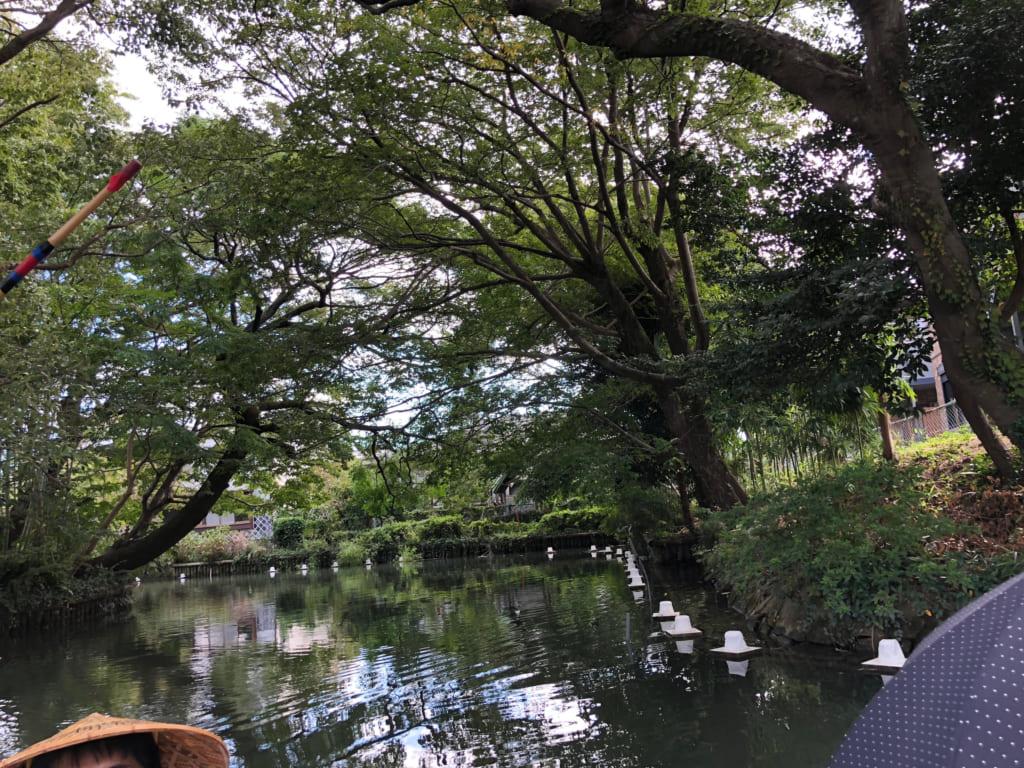 帰郷:福岡県  柳川での川下り